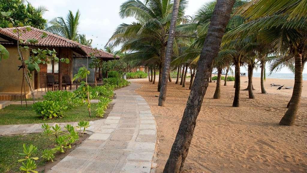 4* Authentic Sri Lanka Escape w/ FREE Room Upgrade