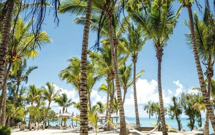 Mauritius dating free