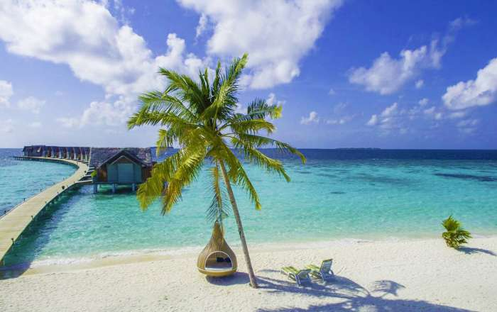 Indian Ocean offers